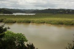 Waitangi River. De Waitangi River near Paihia in New Zealand royalty free stock photography