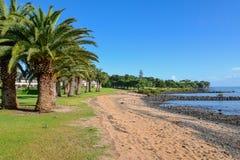 Waitangi strandsikt på den Copthorne semesterorten nära Paihia Arkivfoton
