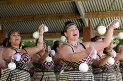 Waitangi Tag und Festival - gesetzlicher Feiertag 2013 Neuseelands stockfoto