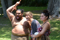 Waitangi traktatu ziemie Zdjęcie Stock