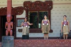 Waitangi traktatu ziemie Zdjęcia Royalty Free