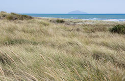 Waitarere Beach, New Zealand Royalty Free Stock Photo