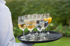 Waiter Royalty Free Stock Image