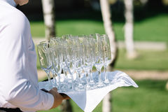 Waiter brings empty glasses Stock Images