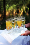 Waiter carrying tray of champagne Royalty Free Stock Images