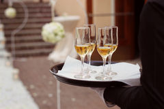 Waiter with 4 champagne glases. Waiter holding a tray with 4 champagne glasses Stock Photography
