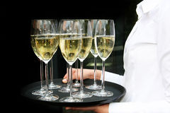 A waiter with champagne glasses on a tray. The background is black Stock Images