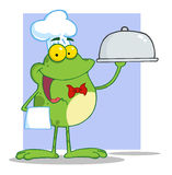 Waiter frog holding A platter over purple Stock Images