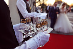 Waiter holding tray with champagne glasses. Waiter serving glasses of champagne Stock Image