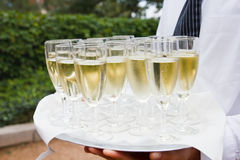 Waiter holding a tray of champagne Royalty Free Stock Images