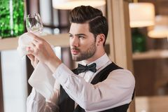 Waiter looking at clean wineglass Royalty Free Stock Image