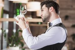 Waiter looking at clean wineglass Stock Images