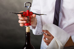 Waiter opens wine bottle. Winery serving tasting alcohol liquor concept. Waiter opens wine bottle. Young male sommelier pulls out cork royalty free stock image