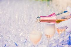 Waiter pouring champagne, sparkling wine royalty free stock photography