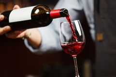 Waiter pouring red wine into wineglass. Sommelier pours alcoholic drink royalty free stock photography