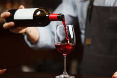 Waiter pouring red wine into wineglass. Sommelier pours alcoholic drink. Waiter pouring red wine into wineglass. Sommelier or bartender pours alcoholic drink Royalty Free Stock Images