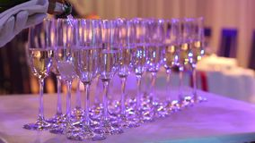 The waiter pours champagne into glasses, champagne glasses on the buffet table, the hall of the restaurant or hotel, the stock footage