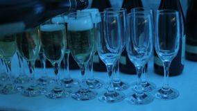 A waiter pours champagne into glasses at a club party. stock video