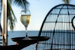 Waiter seaving glass of white wine on a tray by the beach. Waiter seaving glass of white wine on a tray by the beach stock photography