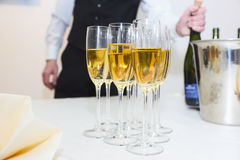 Waiter serving champagne. Shallow focus depth stock photography