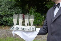 Waiter serving champagne. Waiter in formal dress serving champagne Royalty Free Stock Image