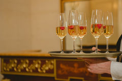 Waiter serving champagne on a tray. Waiter serving champagne with strawberries on a tray royalty free stock photography