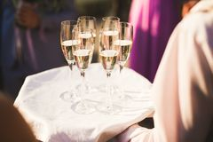 Waiter serving glasses with champagne on a tray.  Royalty Free Stock Images