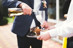 Waiter serving glasses with champagne on a tray.  Stock Photography