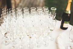 Waiter serving glasses with champagne on a tray.  Royalty Free Stock Image