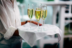 Waiter serving wine glasses. Red, White and Champagne glasses at social events. Waiter serving glasses of red and white wine on a waiters plate in black uniform stock images