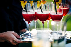 Waiter serving wine glasses. Red, White and Champagne glasses at social events. Waiter serving glasses of red and white wine on a waiters plate in black uniform royalty free stock photos