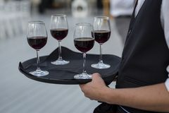 Waiter serving wine glasses. Red, White and Champagne glasses at social events. Waiter serving glasses of red and white wine on a waiters plate in black uniform stock photo