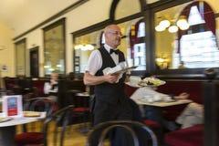 Waiter royalty free stock images