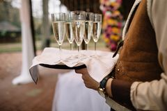 The waiters greet guests with alcoholic drinks. Champagne, red w. Glasses with champagne on a tray. Meeting the guests royalty free stock photography