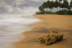 Waiting. Kosgoda beach - Sri Lanka. One of the most lovely beaches in the Island Stock Photography