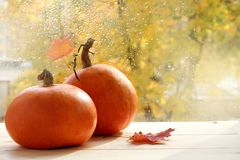 Waiting for autumn holidays Royalty Free Stock Images