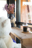 Waiting bear doll sit in the coffee shop Stock Photography