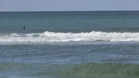 Waiting for the big waves. stock video footage