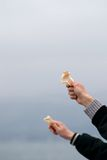 Waiting for the Birds. Two hands holding piece of breads for the seagulls Stock Images