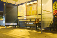 Waiting for the bus. A desolate bus station at night with a lonely teddy bear sitting on the bench and waiting for the next bus Stock Photography