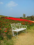 Waiting ... A chair in the middle of the flowers garden in Thailand Royalty Free Stock Photos