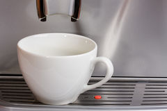 Waiting for coffee. Empty cup in espresso coffee machine royalty free stock photo