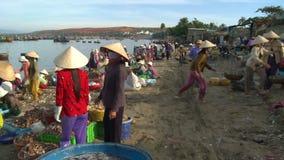 Waiting for fishermen stock video