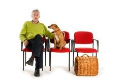 Waiting room veterinary Royalty Free Stock Image
