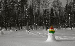 Waiting spring. Reggae mood in black and white winter forest covered with snow. Colored hat on tiny snowbank stock photography