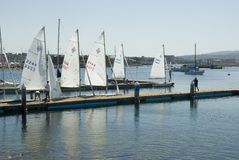 Waiting to sail. Five sailboats ready for a day of sailing Royalty Free Stock Photography