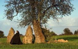 Waiting witch. Woman in black cape, waiting near three menhirs and a solitary tree royalty free stock images