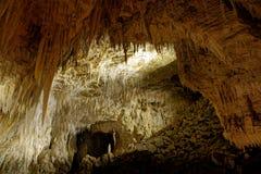 Waitomo höhlt, Nort-Insel von Neuseeland, die schönen Höhlen aus, die für Glühwürmchen bekannt sind stockfotos
