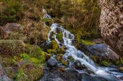 Waitonga cade cascata Fotografia Stock
