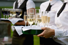 Waitress with dish of champagne glasses. Waitress with dish of champagne and wine glasses Royalty Free Stock Photography